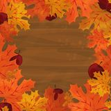 Frame with autumn colorful leaves Stock Photography
