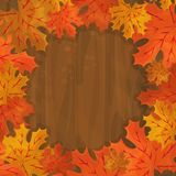 Frame with autumn colorful leaves Stock Image