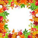 Frame with autumn colorful leaves. Vector illustration. Royalty Free Stock Photo