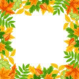 Frame with autumn colorful leaves. Vector illustration. Stock Image