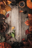 Frame of autumn gifts  with film filter effect Stock Photography