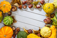 The frame of the autumn harvest placed Royalty Free Stock Photo