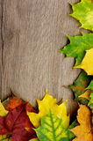 Frame of Autumn Leafs. Corner Border of Various Multi Colored Autumn Leafs closeup on Textured Wooden background Royalty Free Stock Photo