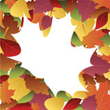 Frame of autumn leaves Stock Photos