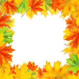 Frame from autumn leaves Stock Photos