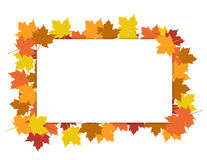 Frame from the autumn leaves Royalty Free Stock Images