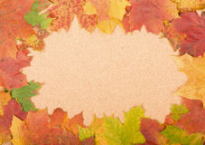 Frame of autumn leaves. On cork background Royalty Free Stock Photos