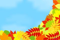 Frame of autumn leaves against the sky. Royalty Free Stock Photography
