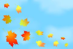 Frame of autumn leaves against the sky. Stock Photo