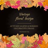 Frame of autumn leaves and berries. Royalty Free Stock Photo