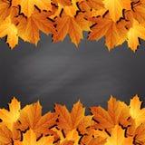 Frame of autumn leaves on black chalkboard. stock illustration
