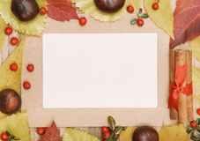 Frame autumn leaves and chestnuts. Royalty Free Stock Photo