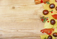 Frame with autumn leaves and chestnuts. Stock Photos