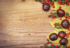 Frame with autumn leaves and chestnuts. Stock Photography