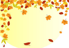 Frame of autumn leaves Royalty Free Stock Image
