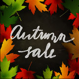Frame of autumn leaves painted on black chalkboard Royalty Free Stock Photos