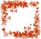 Frame with autumn leaves Stock Images