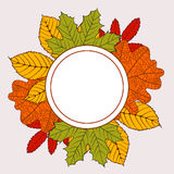 Frame of autumn leaves Royalty Free Stock Images
