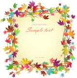 Frame with autumn leaves. Autumn square frame made ​​of branches with bright colored leaves, white background, illustration stock illustration