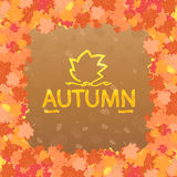 Frame from autumn leaves. Stock Photo