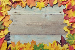 Frame from autumn leaves Stock Photo