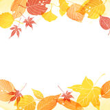 Frame of autumn leaves stock illustration