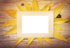 Frame with autumn leaves. Royalty Free Stock Images