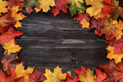 Frame with autumn leaves on a wooden background Royalty Free Stock Photography