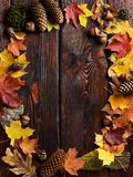 The frame of autumn leaves on wooden background with copy space Royalty Free Stock Photos