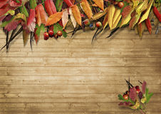 Frame from autumn leaves on the wooden background Stock Image