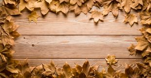 Frame of autumn leaves on wooden boards royalty free stock photos