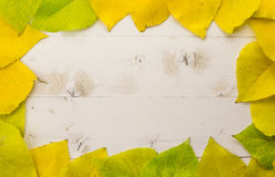 Frame of autumn leaves in yellow and green Royalty Free Stock Photo
