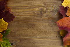 Frame of autumn maple leaf on an old wooden table. Multicolored autumn maple leaves lying on a wooden surface of the left and right edge of the frame Royalty Free Stock Photo