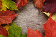 Frame from autumn maple leaves on wood surface Royalty Free Stock Photography