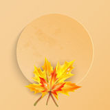 Frame with autumn maple leaves Stock Photos