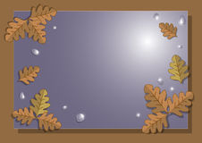Frame of autumn oak leaves Royalty Free Stock Image