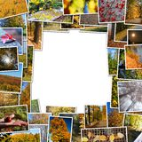 Frame of autumn photos Stock Photo