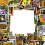 Frame of autumn photos. On white background Stock Photo