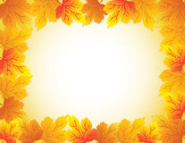Frame with autumn plants Stock Images