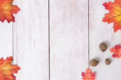 Frame of autumn. Top view on autumn frame of multi-colored autumn leaves and three hedgehogs on a wooden board with copy space. stock photo