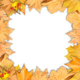 Frame of autumn yellow leaves with empty place Stock Images