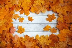 Frame of autumn, yellow leaves on a white surface. stock images