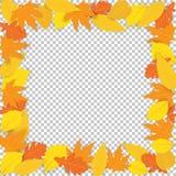 Frame autumn yellow leaves. royalty free illustration