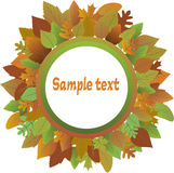Frame from autumnal leaves. Stock Photo