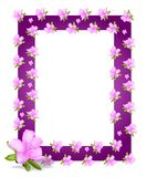 Frame with azaleas, cdr vector Stock Photo