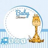 Frame baby giraffe Royalty Free Stock Image