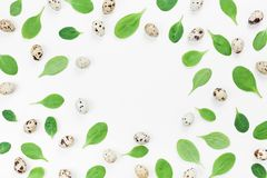 Frame from baby spinach leaves and quail eggs for a healthy breakfast on white background top view. Flat lay. Frame from baby spinach leaves and quail eggs for Stock Images