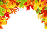 Frame background with colorful autumn leaves. Vector illustration. Royalty Free Stock Photography