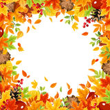 Frame background with colorful autumn leaves. Vector illustration. Stock Images