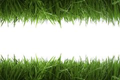 Frame background with green grass royalty free stock photography